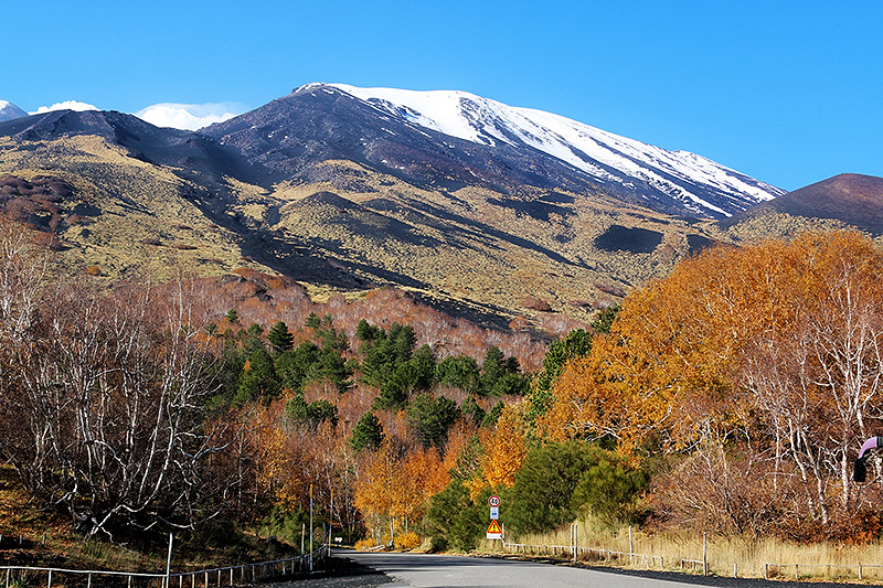 Autumn colors in the vicinity of the volcano