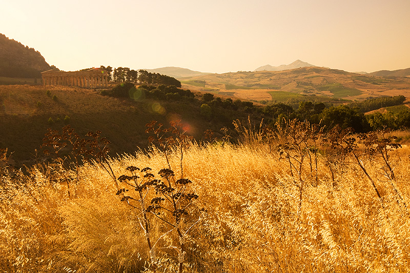The Temple of Segesta in the evening sun