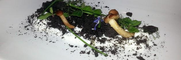 Social restaurant Gagini presenteert de nieuwe chef