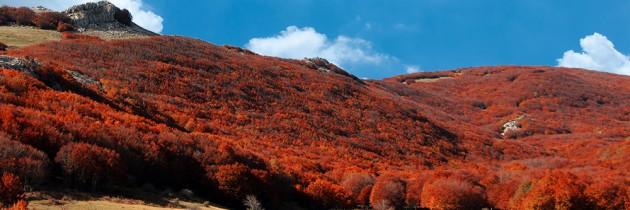Kleuren van Sicilië: rood